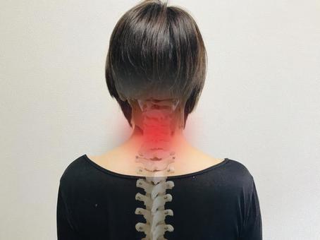 坂出で首こり・肩こり・頭痛の治療を探していませんか?